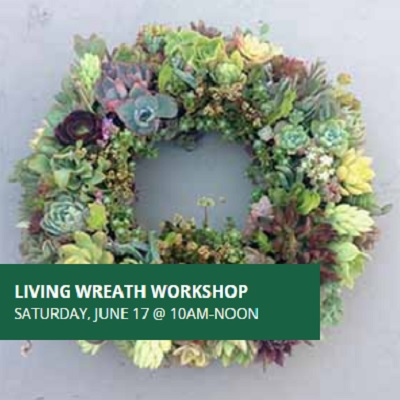 Living Wreath Workshop
