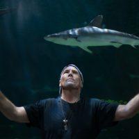 Sea Melodies: Douglas Morton Live