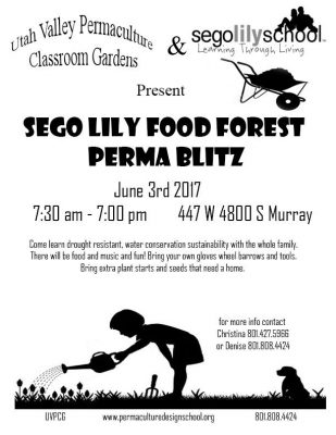 Sego Lily School Permablitz Food Forest