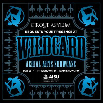 Wildcard: Aerial Arts Showcase