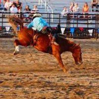 Riverton Town Days Rodeo