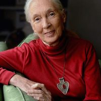 Wasatch Speaker Series: Dr. Jane Goodall