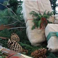 16th Annual Holiday Open House
