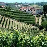 Fox School of Wine's 'A Closer Look Explores Italy'