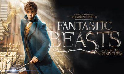 Friday Night Flicks: Fantastic Beasts