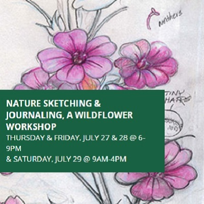 Nature Sketching and Journaling, A Wildflower Workshop