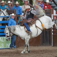 63rd Annual Western Stampede PRCA Rodeo