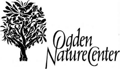 Fledglings: Knee-High Naturalists