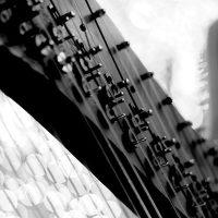Intermezzo Chamber Music Series: Concert V