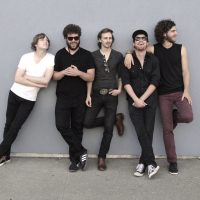 The Stone Foxes