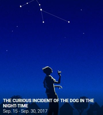 Curious Incident of the Dog in the Night-Time pulled from children's reading list