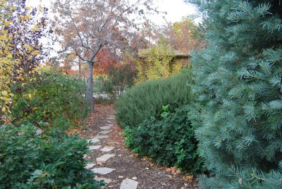 Turning Over Your Garden: Fall Time Yard And Garden Care