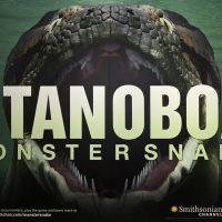 Titanoboa Exhibit