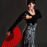 Intermediate Flamenco on Zoom
