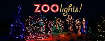 ZooLights at Utah's Hogle Zoo