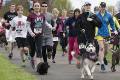 5th Annual Yuba Dog Run 5k