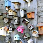 Birdhouse Competition & Exhibition