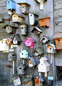 Birdhouse Competition & Exhibition
