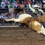 2021 Ogden Pioneer Days Rodeo