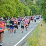 Altra Top of Utah Marathon