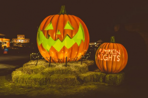 Pumpkin Nights 2019