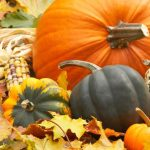 Party on the Patio: Fall Food Festival