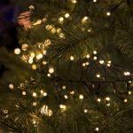 Washington City Tree Lighting Ceremony