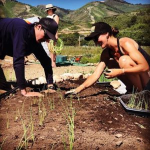 AmeriCorps Volunteer and Community Outreach Coordi...