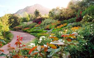 2020 Earth Day Spring Garden Tour -CANCELLED
