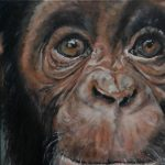 Adult Paint Night: Apes
