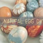 Natural Egg Dye Workshop