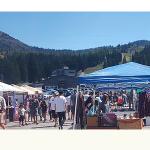 Big Cottonwood Canyon Flea Market