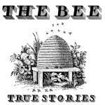 The Bee // Schooled