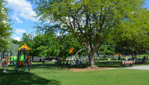 Big Bear Park