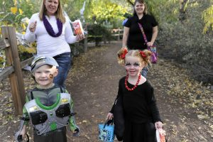 2020 Fall Festival and Pumpkin Alley