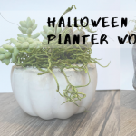Halloween Cement Planter Workshop