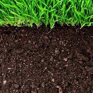 Soils: Dig Deeper Into Gardening presented by Red Butte