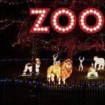 2019 ZooLights at Utah's Hogle Zoo