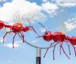 Flying Objects 5.0: Tango