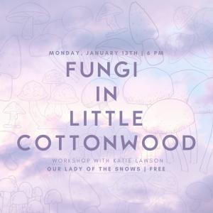 Fungi in Little Cottonwood