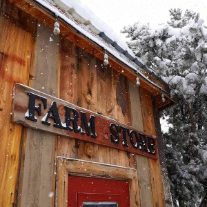Nature Hills – Christmas on the Farm