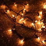 Parowan Christmas in the Country