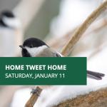 Home Tweet Home Workshop for Kids