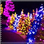Holiday Nights - Utah Lake State Park