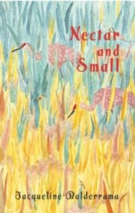 Jacqueline Balderrama | Nectar and Small