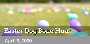 2020 Easter Dog Bone Hunt -VENUE CLOSED