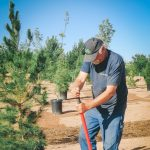Arbor Day Celebration 2020 -CANCELLED