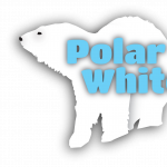 Polar Bear White Out at Utah's Hogle Zoo