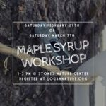 Maple Syrup Workshop