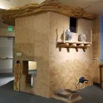USUE Prehistoric Museum Free Day